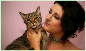Смертность среди котят